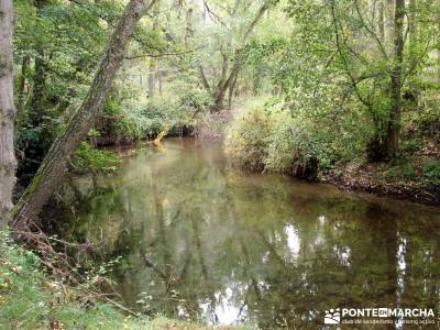Hoces del Río Duratón - Sepúlveda;fotosenderismo free trekking gratis, free